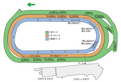 東京競馬場1