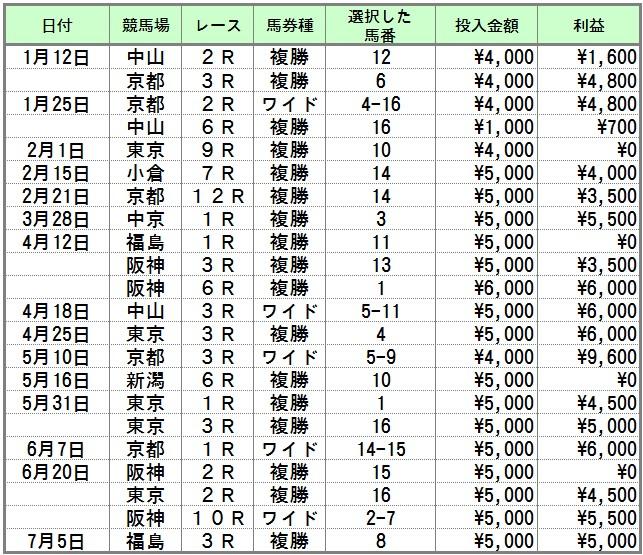半年間の競馬成績表